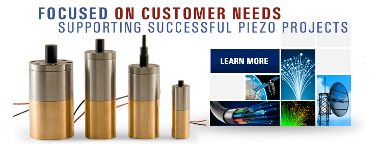 Piezo Stack Actuators